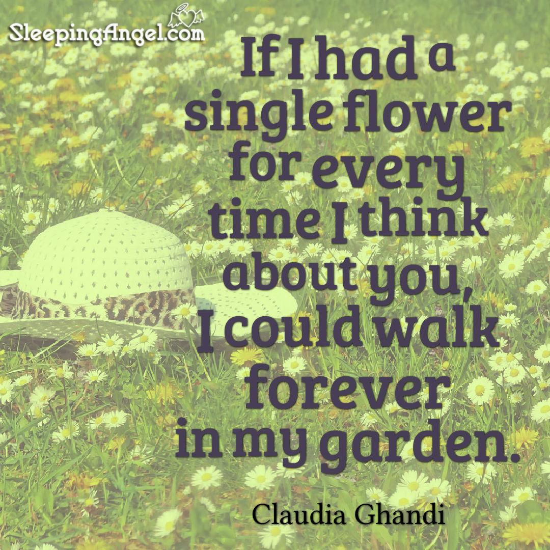 Claudia Ghandi Quote