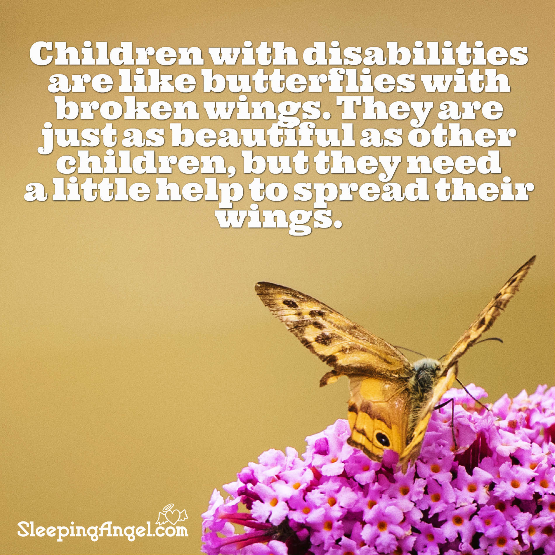 Children with Disabilities Quote