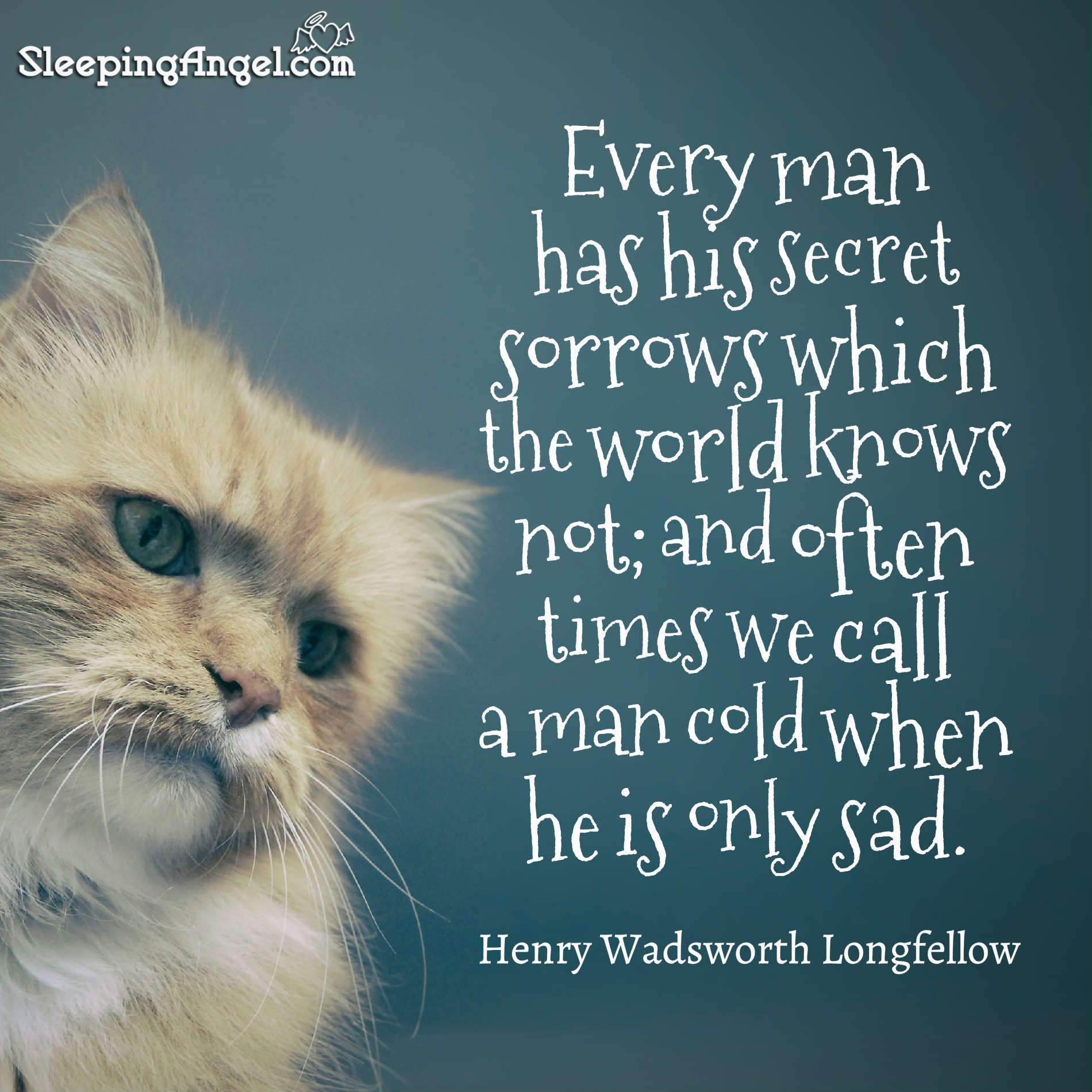 Every Man Has His Secret Sorrows Which The World Knows Not; And Often Times  We Call A Man Cold When He Is Only Sad. ~Henry Wadsworth Longfellow