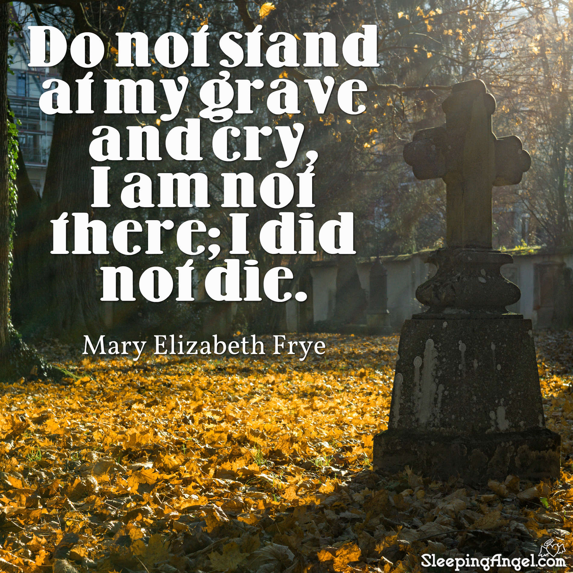 Do Not Stand at my Grave Quote