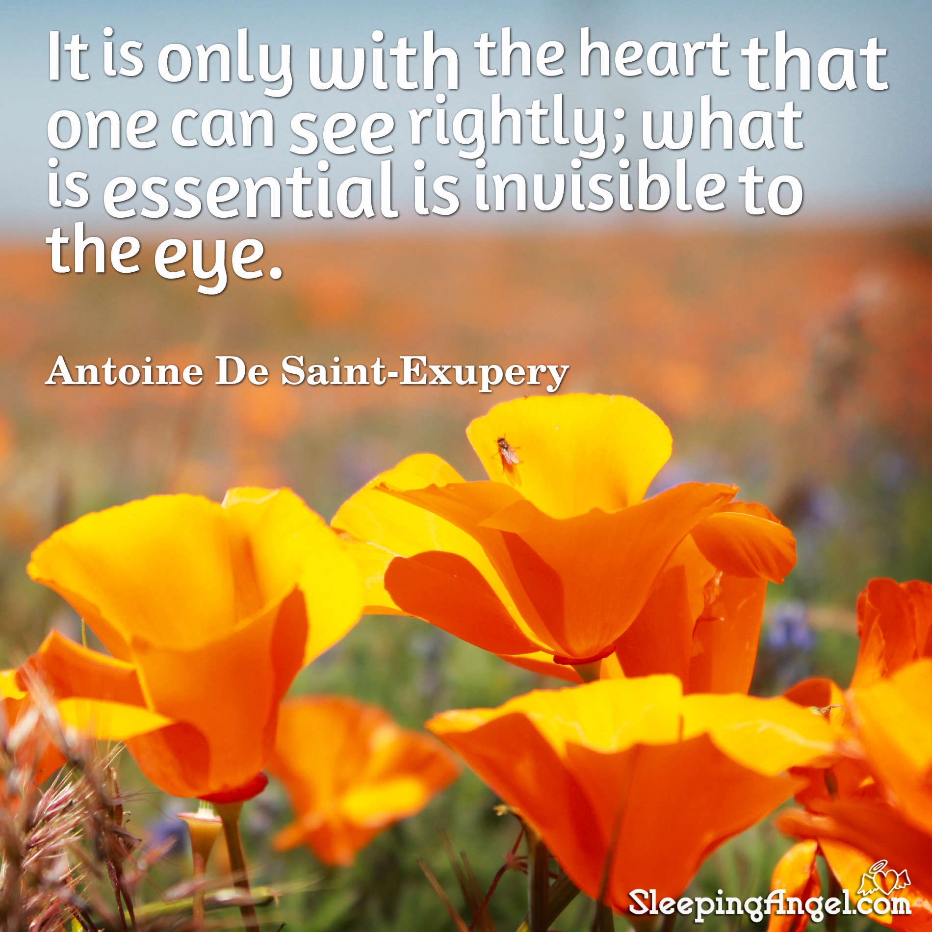 See with the Heart Quote