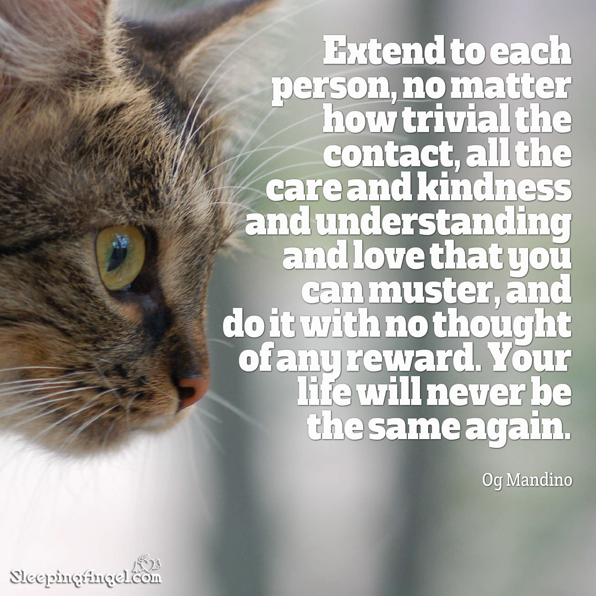 Care & Kindness Quote