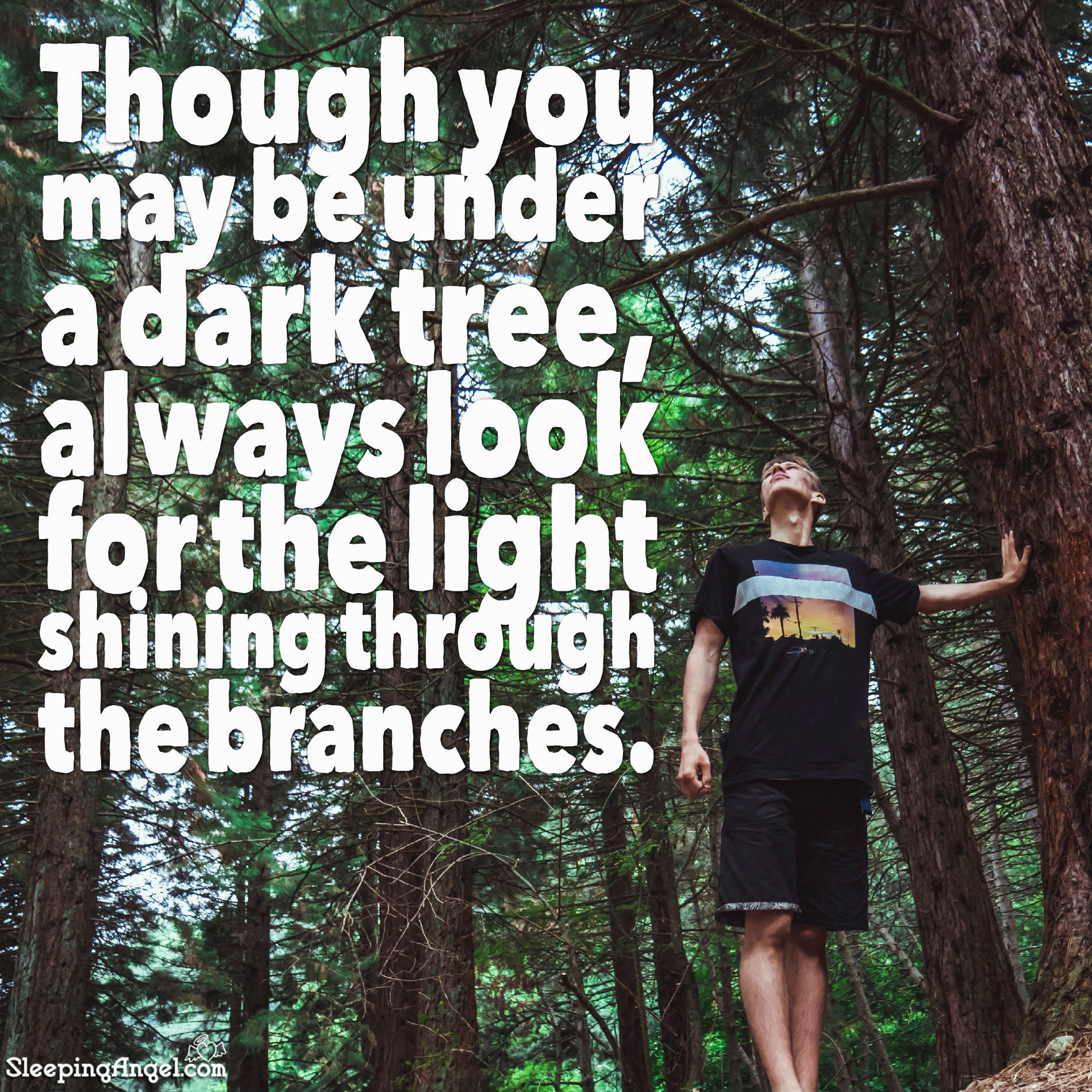 Look for the Light Quote