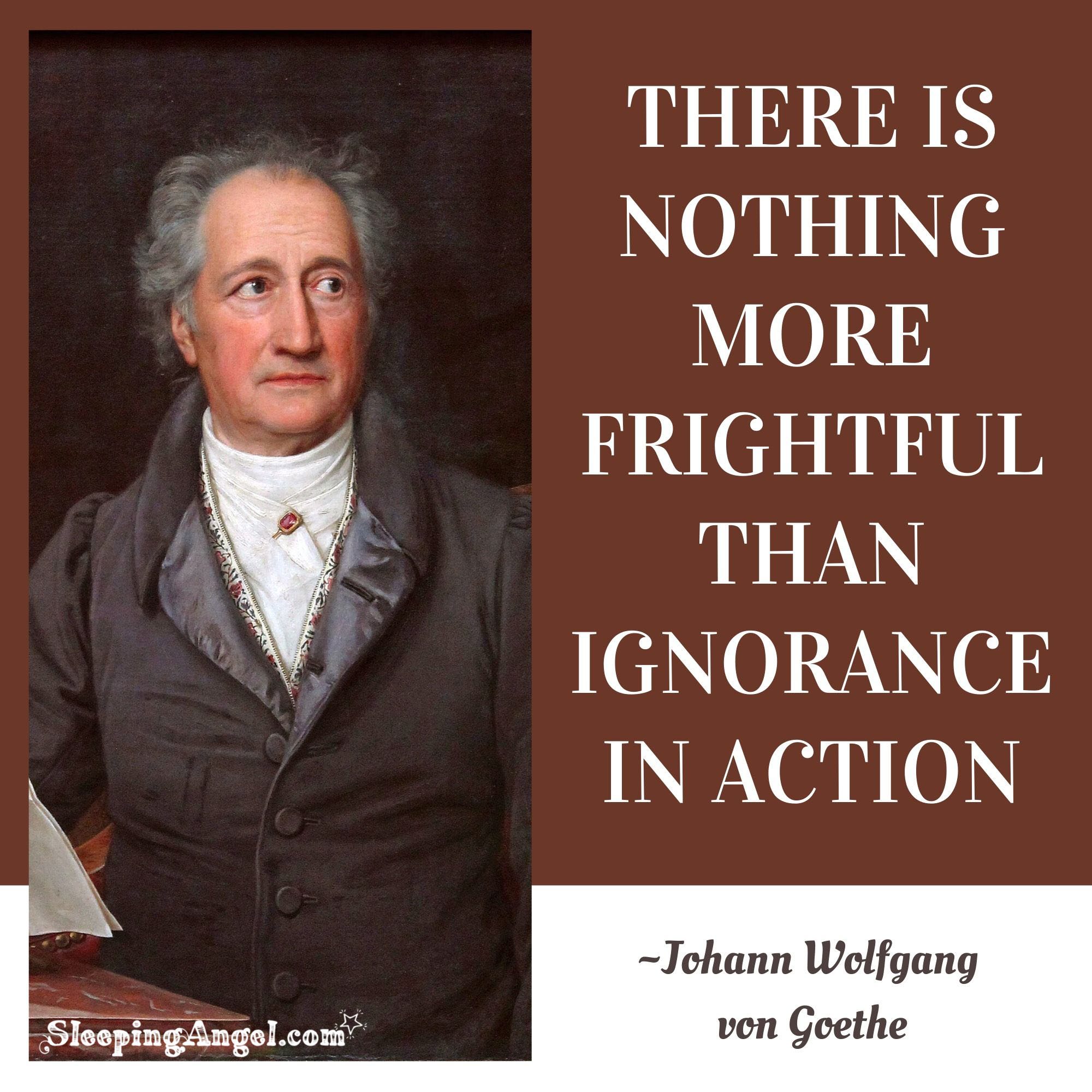 Ignorance Quote