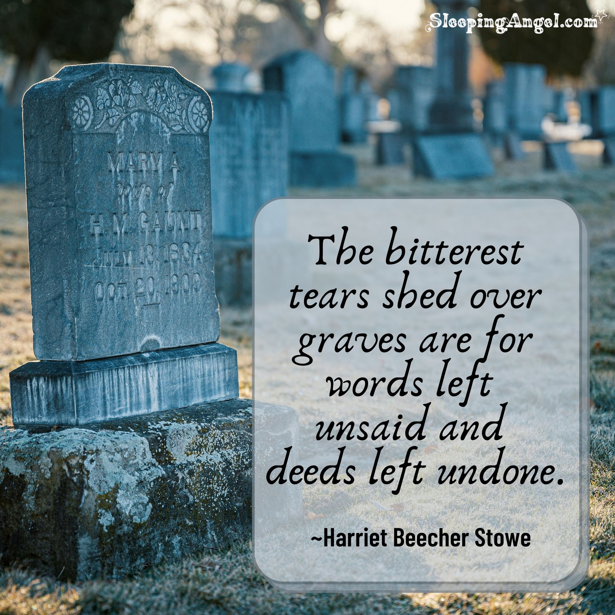 Tears Shed Over Graves Quote