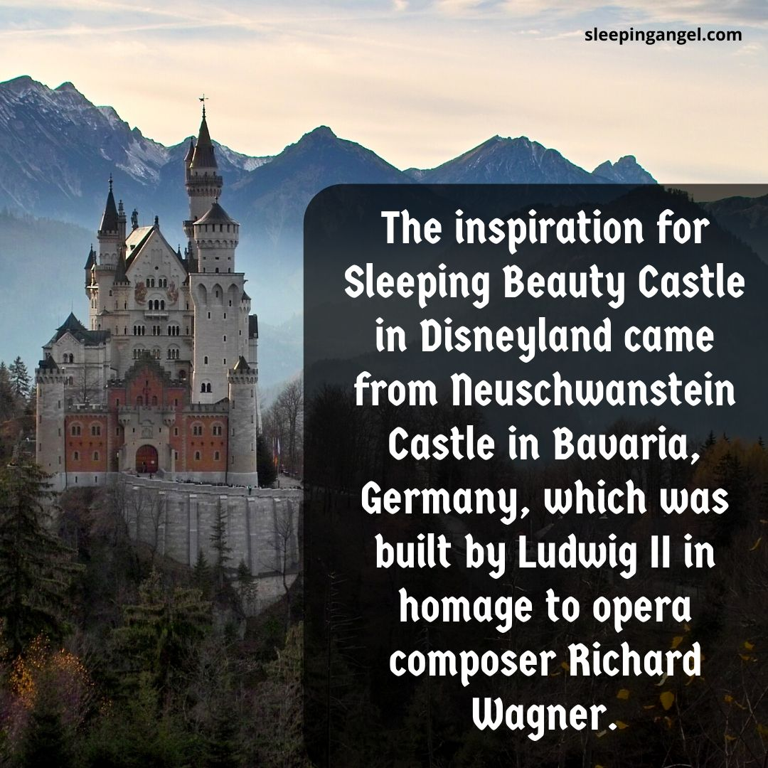 Did You Know? Sleeping Beauty Castle
