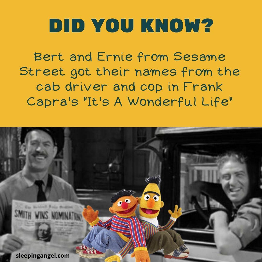 Did You Know? Bert & Ernie