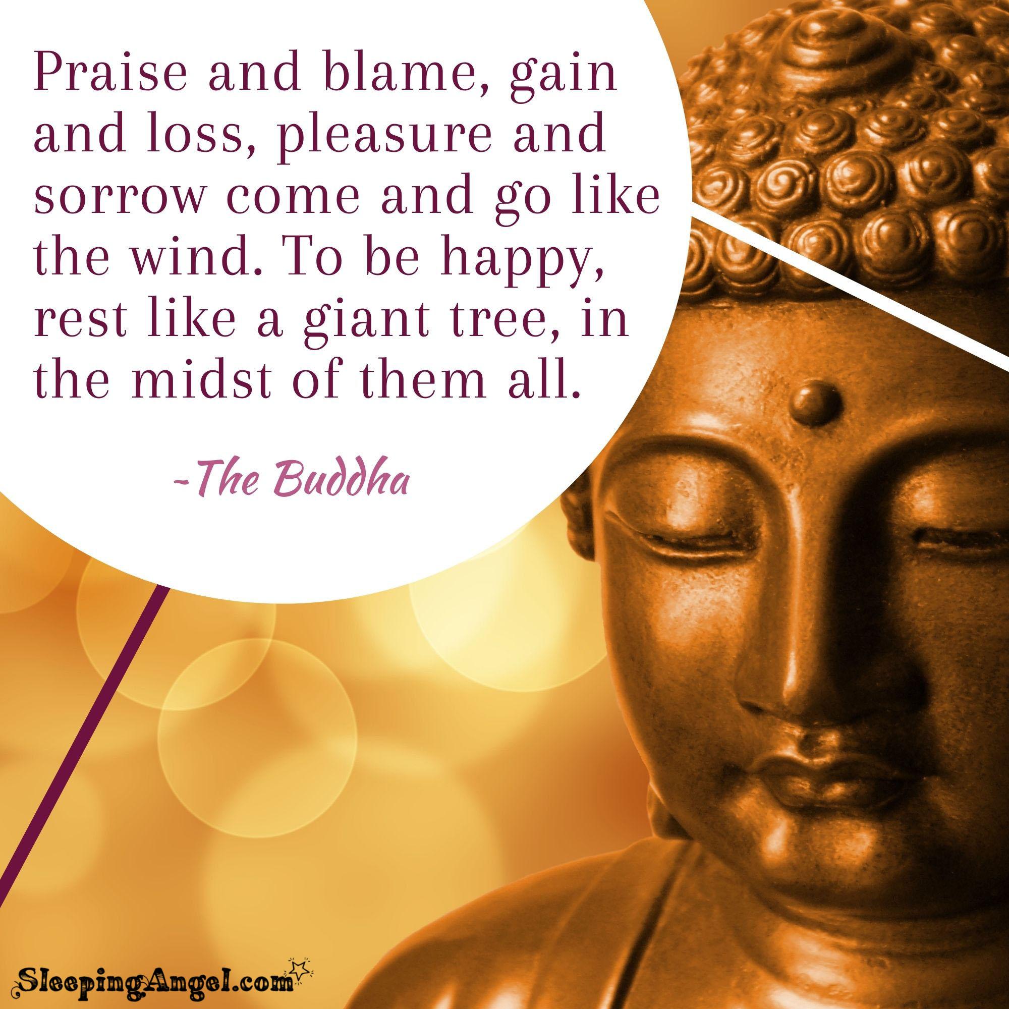The Buddha Quote