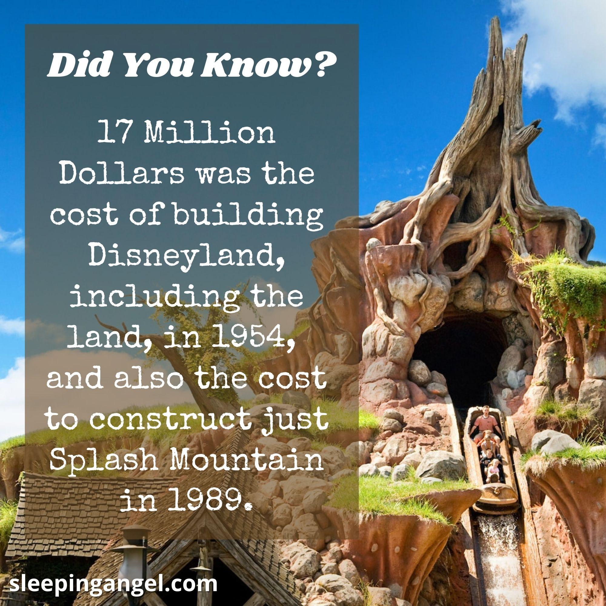 Did You Know? Splash Mountain
